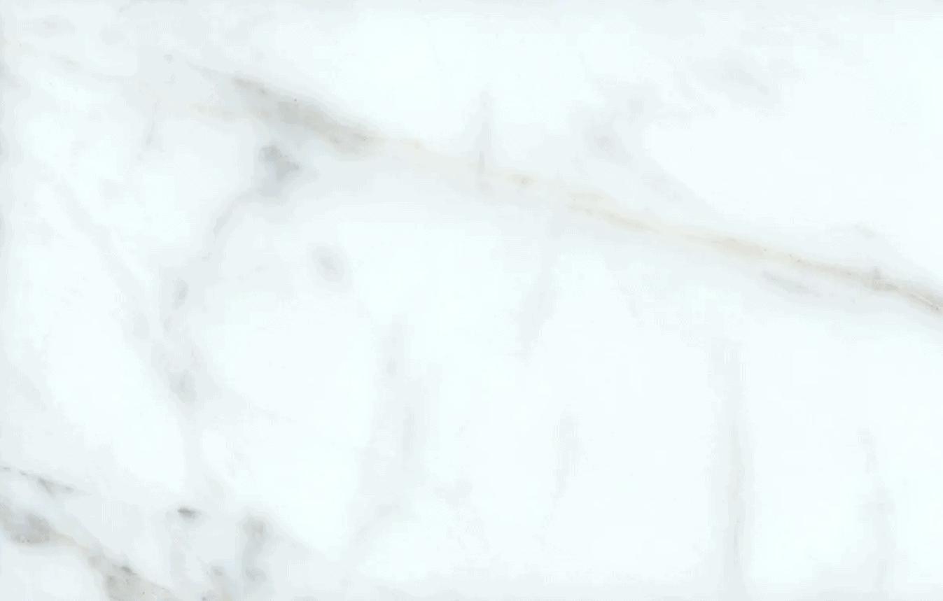 Statuario Venato